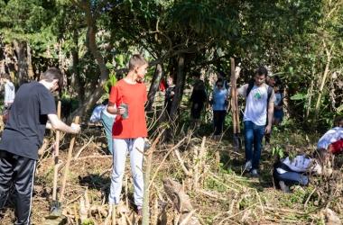 Projeto Plantadores de Árvores chega a Amparo