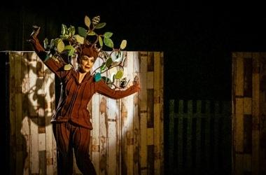 """Sesc apresenta """"A árvore que fugiu do quintal"""" neste domingo"""