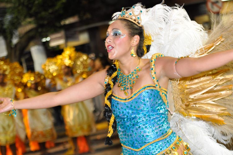 Desfile da Alunos do Samba, carnaval de 2012 (Foto: Carlos Mafort)