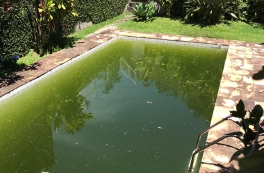 A piscina verde da casa na Rua Cristina Ziede (Foto de leitor)