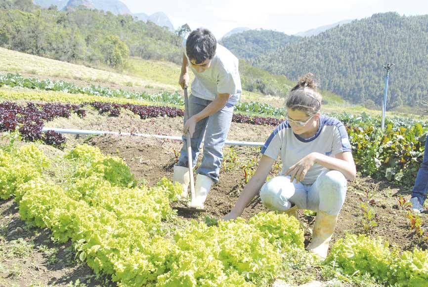 Alunos do Rei Alberto tem aulas durante uma semana na escola e na outra, atuam nas lavouras da região (Foto: Cris Torres)