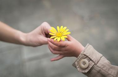 Dia Mundial da Gentileza: em busca do efeito borboleta nas relações humanas