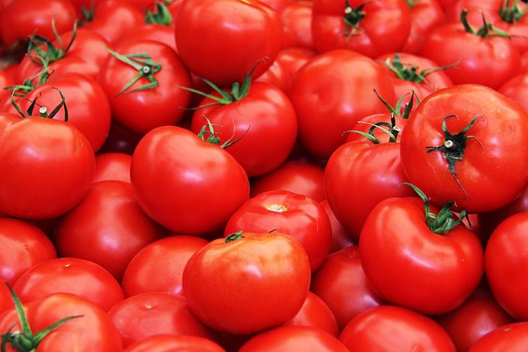 Preço do tomate volta a disparar em Friburgo