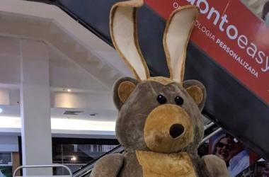 O urso fantasiado de coelho do Cadima (Reprodução da internet)