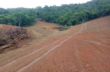 Segundo os policiais, a área era desmatada com o auxílio de um trator. Proprietário não foi localizado